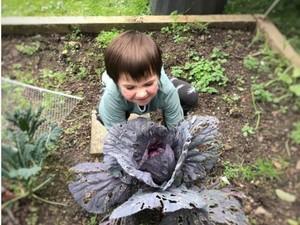 Foto: Keseruan Berkebun Bareng si Kecil