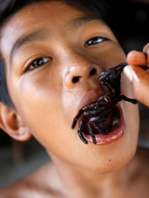 Foto: Tarantula Goreng, Bagaimana Rasanya?