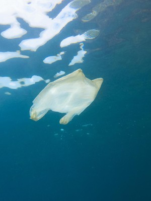 Garam Laut yang Kita Makan Terancam Pencemaran Plastik