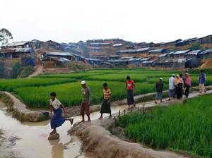 Bangladesh Akan Bangun 14 Ribu Kamp Baru untuk Pengungsi Rohingya