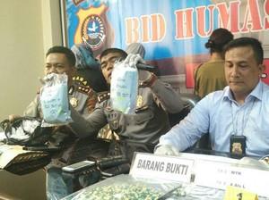 BNN Siap Cegah Pil PCC Masuk ke Bali
