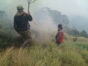Kebakaran Savana Bromo Seluas 50 Hektare Akhirnya Padam