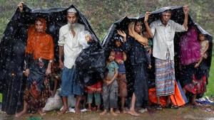 Tragedi Rohingya Ketuk Hati Selebriti Tanah Air