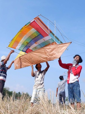 Rayakan Panen, Petani Banjarnegara Terbangkan Layang-layang