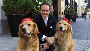 Foto: 12 Hotel Terbaik Buat Pecinta Binatang
