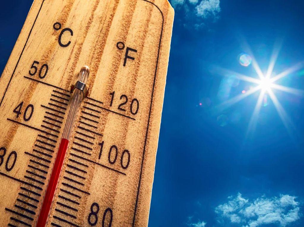 Cuaca Panas Melanda Indonesia, Waspadai Heat Stroke
