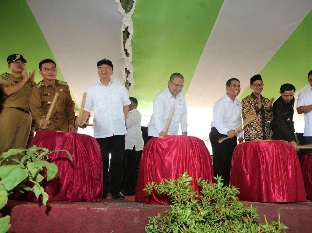 Tekan Impor, Produksi Jagung di Bengkulu Selatan Digenjot