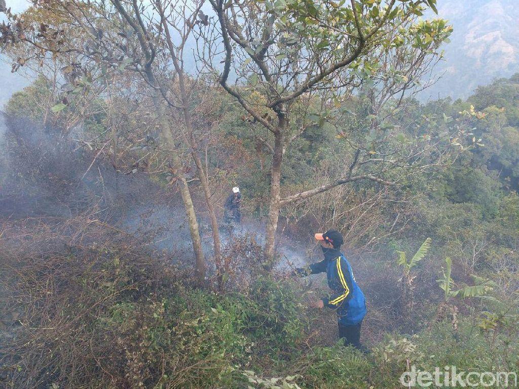 Kebakaran Hutan di Lereng Gunung Muria Padam, Warga Masih Berjaga
