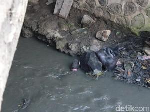 <i>Dear</i> Pemkab Garut, Sungai Ciwalen Bau Tercemar Limbah Kulit