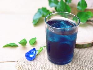 Uniknya Minuman Segar Berwarna Biru Alami dari Bunga Telang