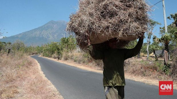 Aktivitas Meningkat, Gunung Agung Mulai Keluarkan Asap