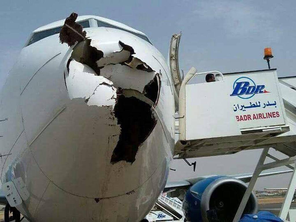 Ini Bahayanya Bird Strike, Seperti yang Dialami Air Force Two Mike Pence