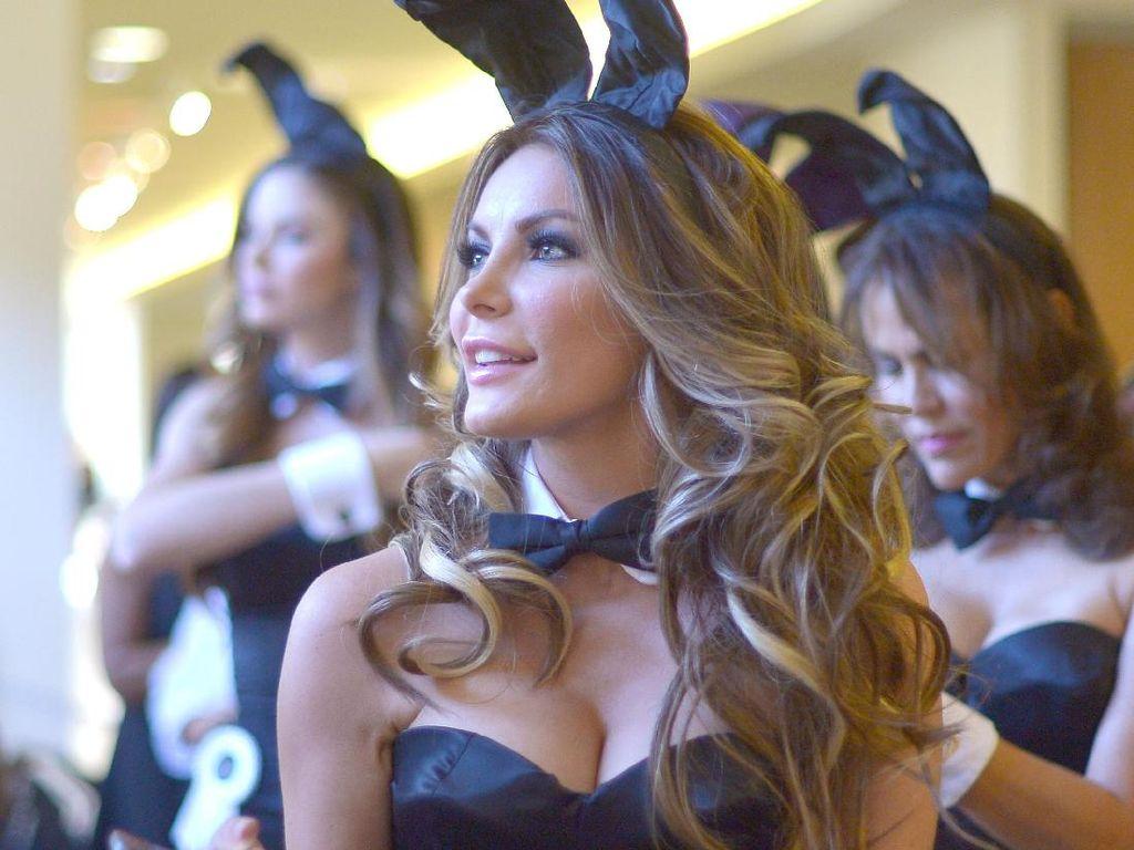 Crystal Hefner, Janda Bos Playboy yang Kini Kasmaran