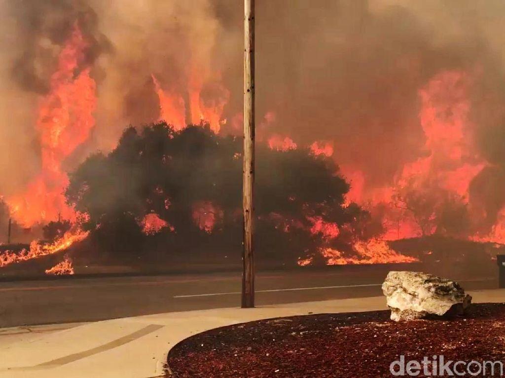 Penampakan Dahsyatnya Kobaran Api yang Melahap Hutan di California