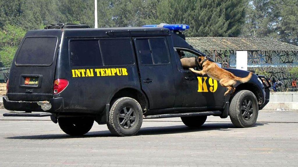 Tim K9 Taipur Kostrad Demo Pembebasan Tawanan