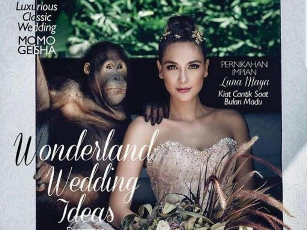 Pose dengan Orangutan, Luna Maya Dapat Kritikan Pedas