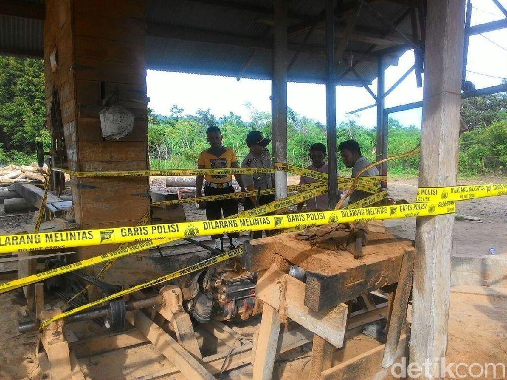 Polisi Sita 11 Kubik Kayu Ilegal di Aceh
