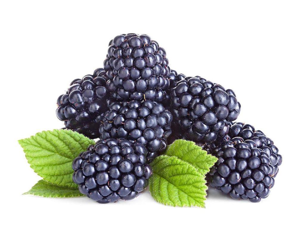 Raspberry Hitam Boleh Dilirik karena Bagus untuk Kesuburan