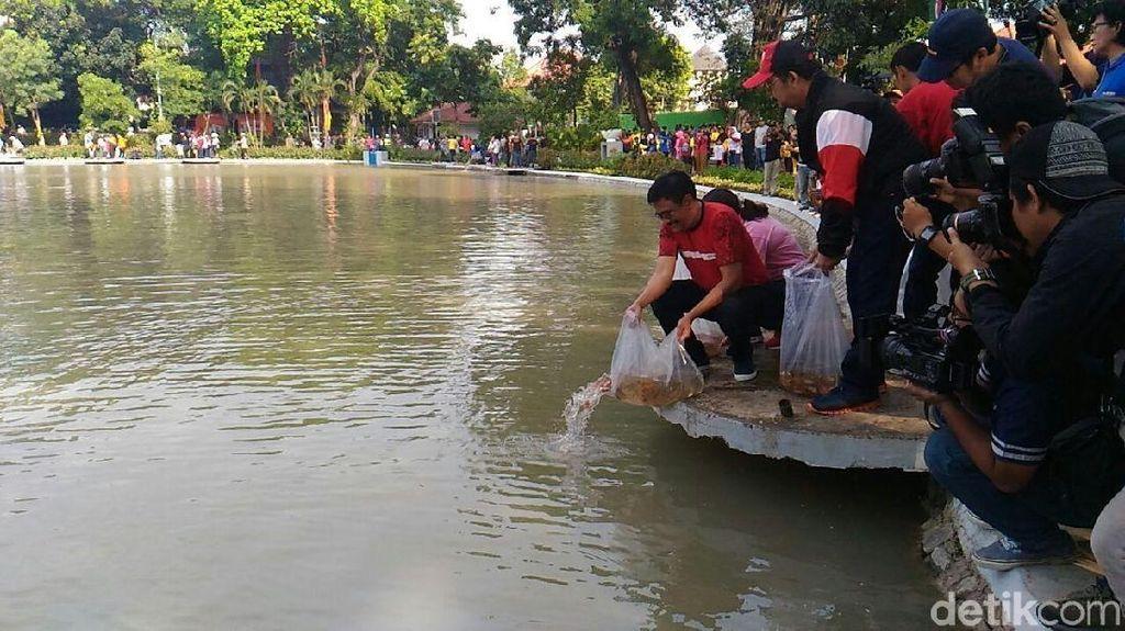Foto: Gubernur Djarot Lepas 50 Ribu Benih Ikan di Taman Situ Lembang