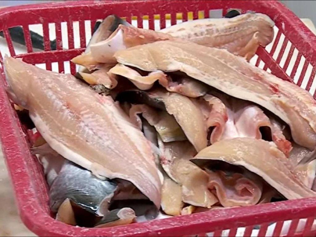 Awas! Patin Vietnam Berbahaya Beredar di Pasaran