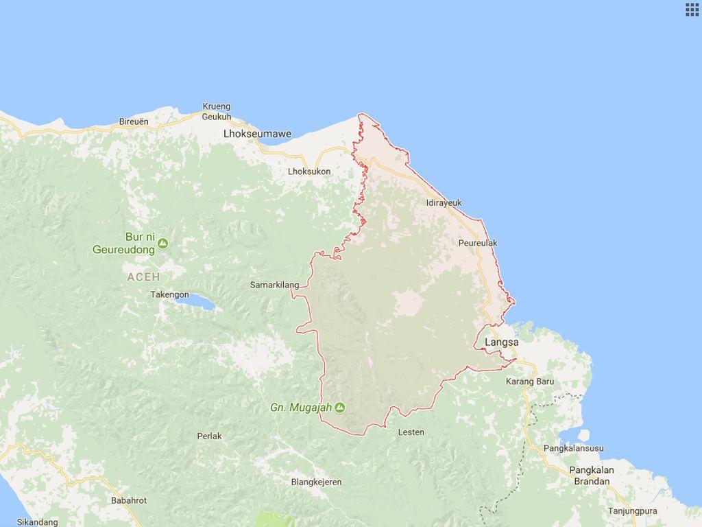2 Gajah Ditemukan Mati di Aceh Timur, Diduga Kesetrum