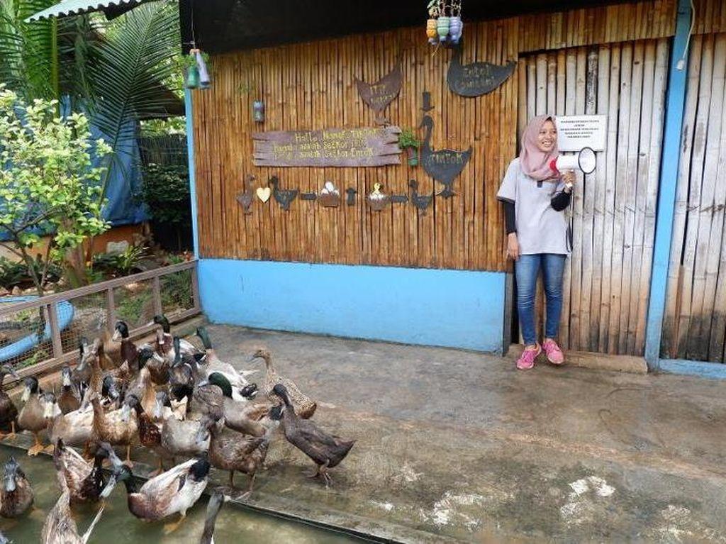 Wisata Edukatif Baru di Ancol, Cocok Buat Keluarga