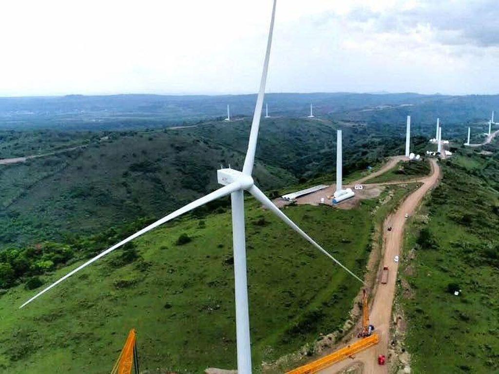 Ini Deretan Proyek Kebun Angin yang Dibangun di RI