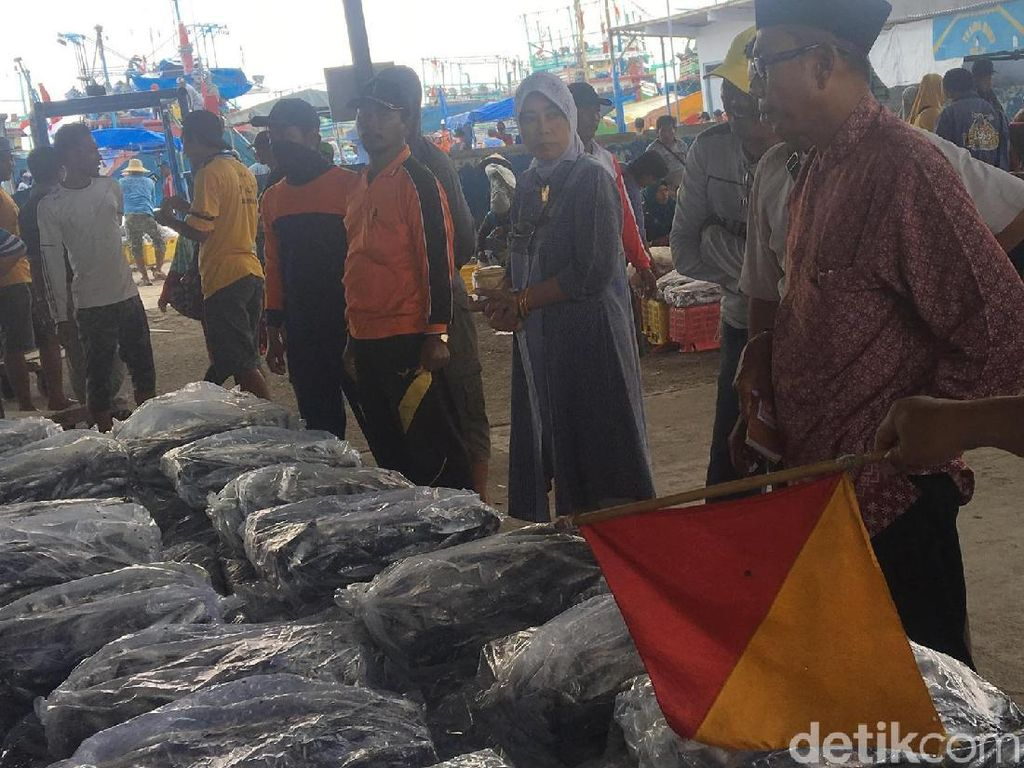 Keramaian Lelang Ikan di TPI Juwana, Jawa Tengah