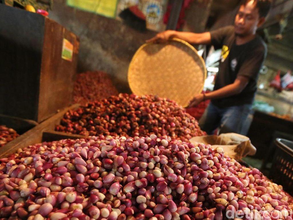 Masih Tinggi, Harga Bawang Merah Capai Rp 45.000/Kg