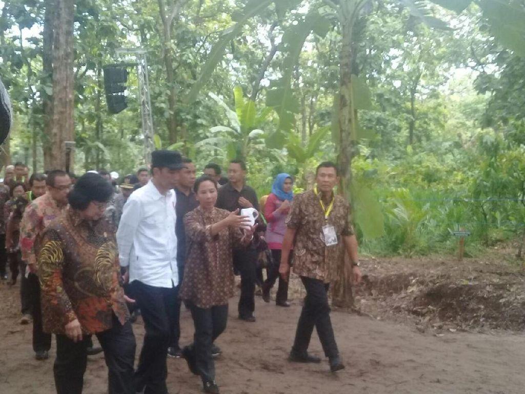 Pemerintah Bagi-bagi 2,6 Juta Ha Lahan Hutan Pekan Depan