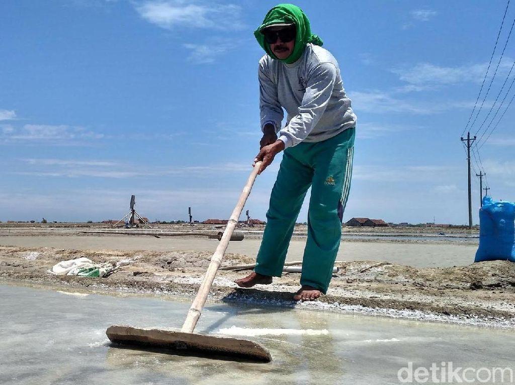 Izin Impor Garam Industri Belum Keluar, Ini Kata Mendag