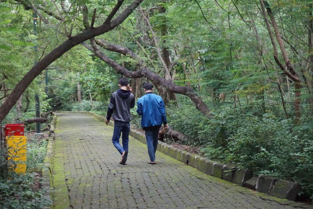 Srengseng City Forest, West Jakarta, is proposed to be a tourist destination.  However, the government must change the face of urban forests in order to attract tourists.