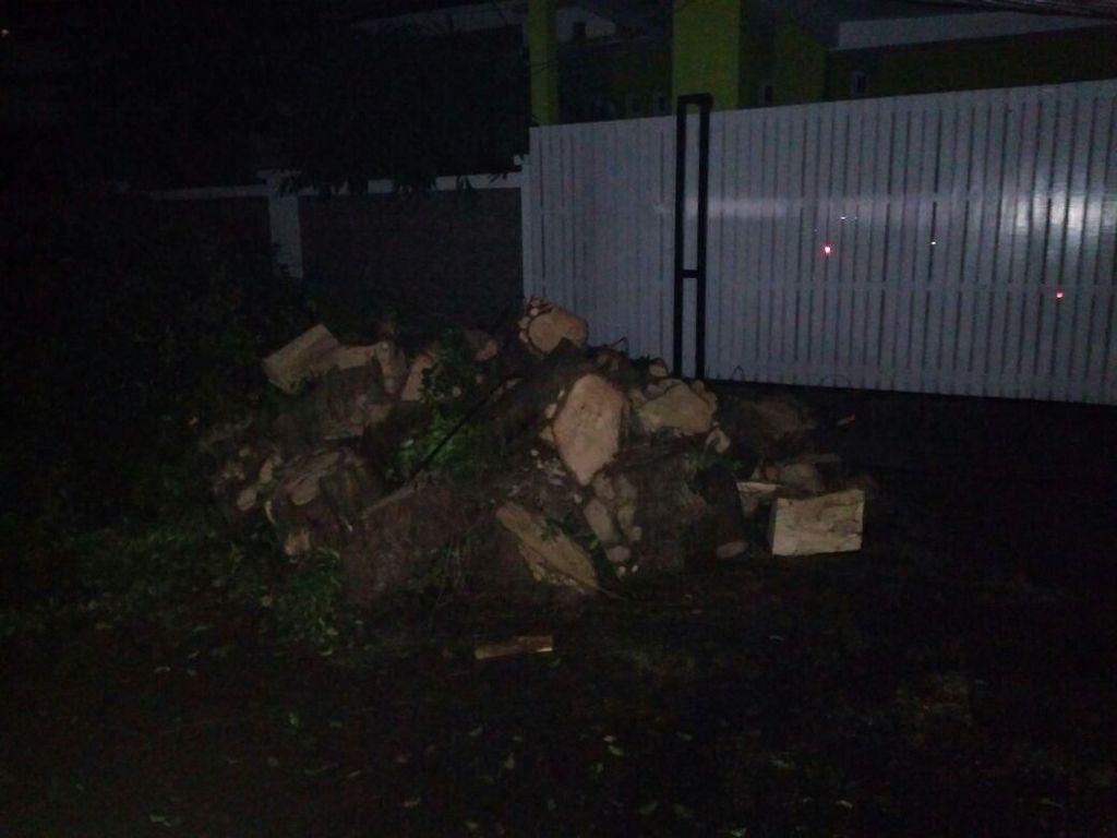 Evakuasi Pohon Tumbang di Kompleks Setneg Selesai