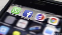 Signal dan Telegram Laris Manis, Bos WhatsApp Turun Gunung