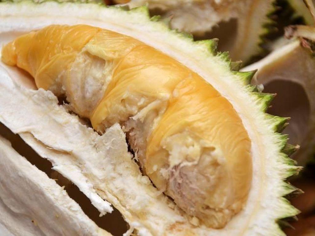 Pencinta Durian? 5 Tempat Ini Punya Durian Masak yang Enak