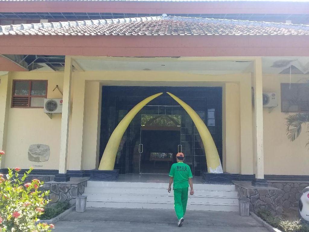 Paket Wisata Heritage Diusulkan untuk Bangkitkan Museum Trinil