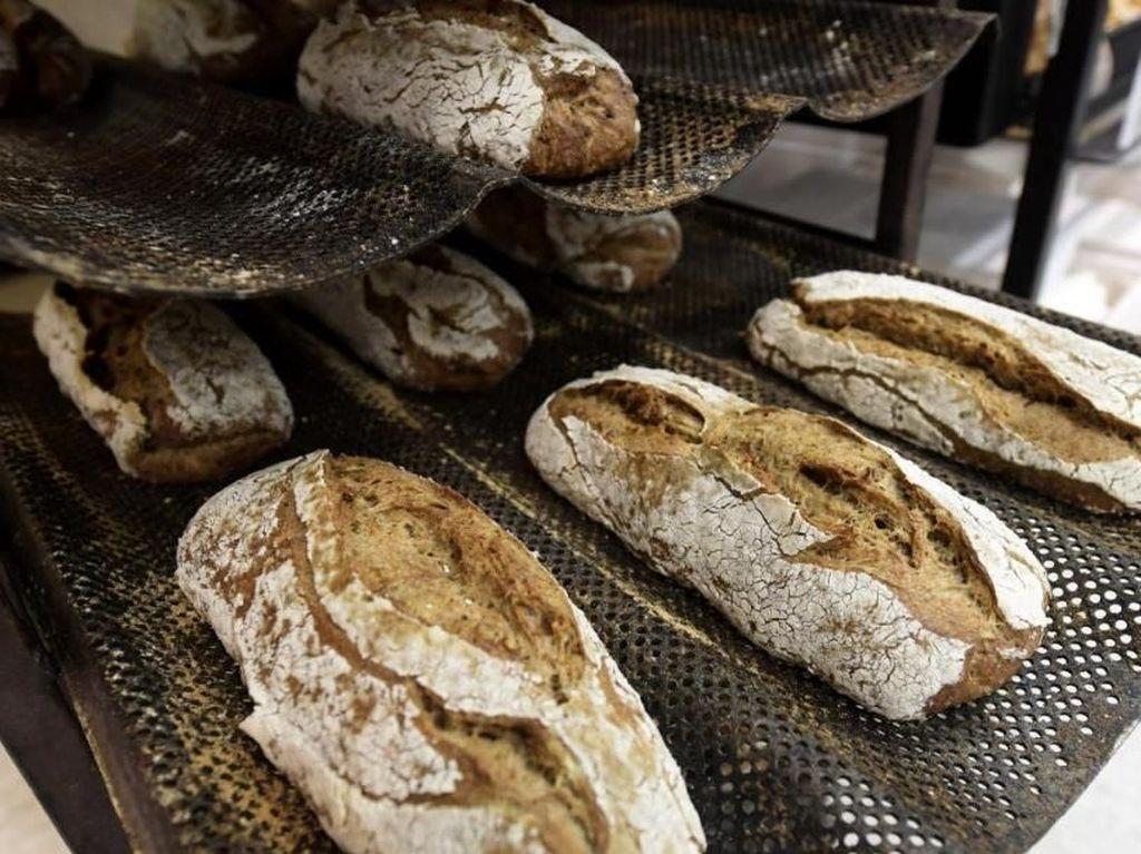 Mau Makan Roti dari Tepung Jangkrik?