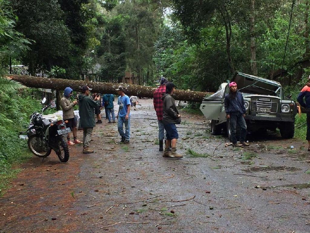 Badai Terjang Lembang, Pohon Tumbang Timpa Mobil dan Bangunan