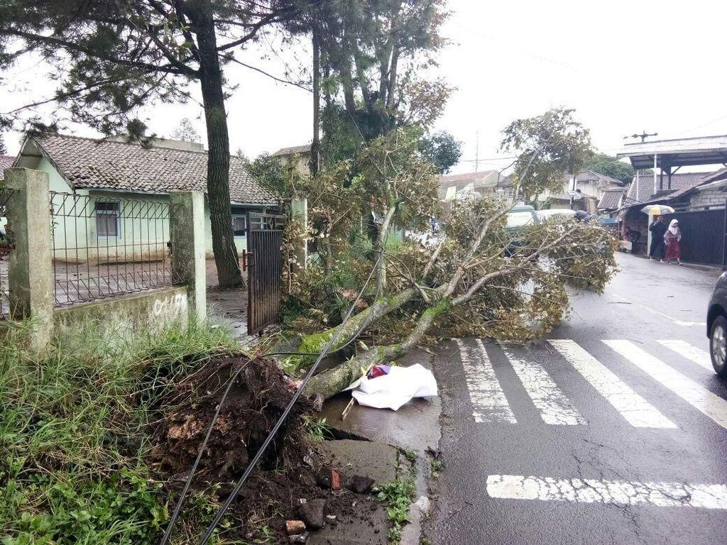 BMKG: Badai Siklon Kini di Laut, Gelombang Bisa Setinggi 6 Meter