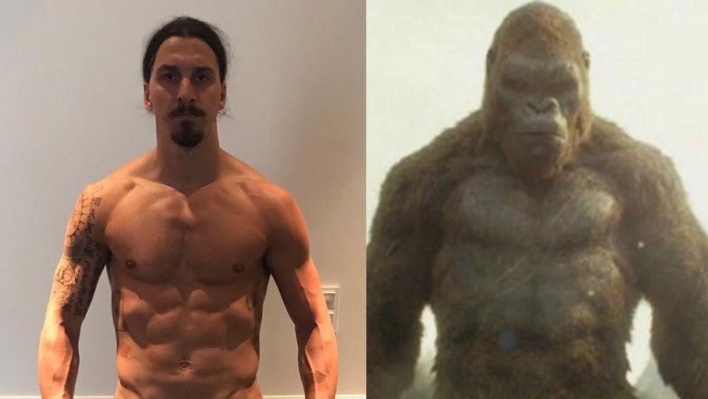 Foto: Tubuh Kekar Berotot Seperti King Kong Ala Zlatan Ibrahimovic