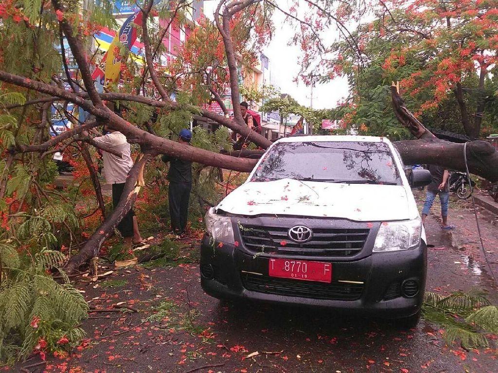 Mobil Pelat Merah di Karawang Tertimpa Pohon Tumbang