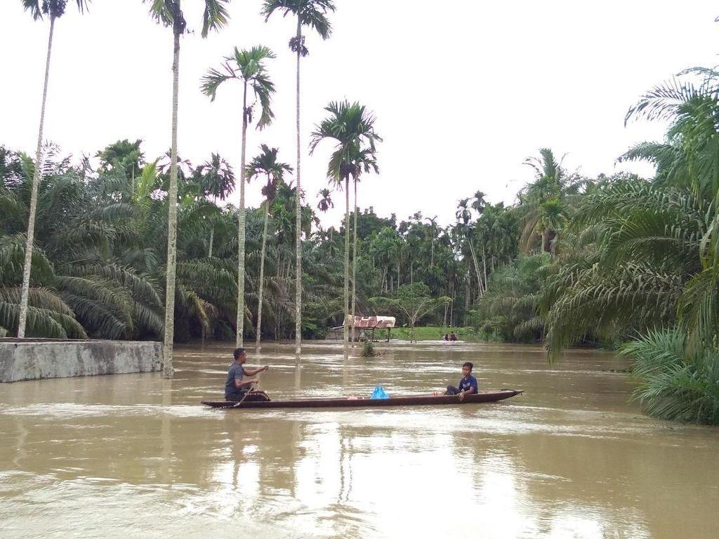 Banjir di Aceh Utara Meluas, Landa 19 Kecamatan