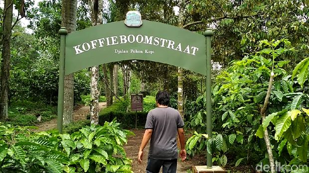 Akhir Tahun Keliling Jawa Timur Yuk, Banyak Destinasi Baru!