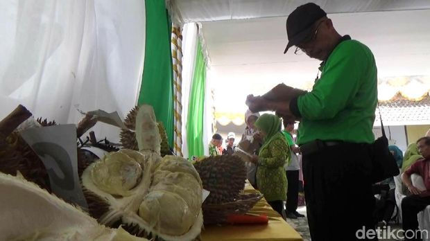 Purworejo Gelar Audisi Cari Raja Durian Baru