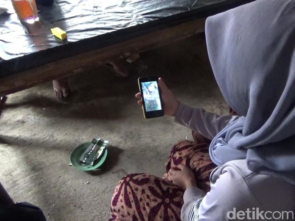 Polisi Terima Laporan Soal Kakek yang Umpankan Cucu ke Monyet