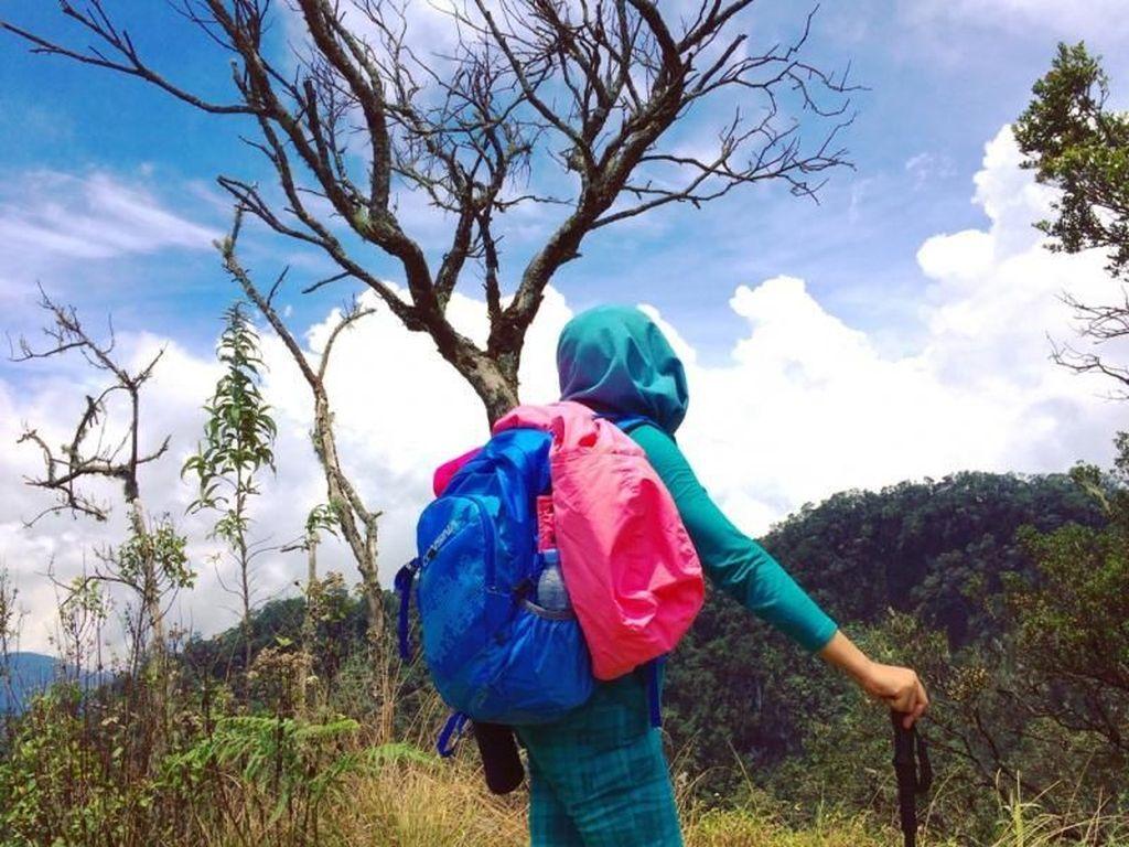 4 Pendaki Dikabarkan Tersesat di Gunung Patuha