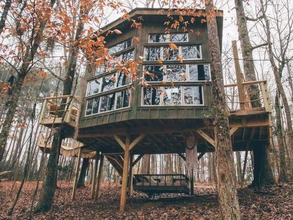 Foto: Hotel Rumah Pohon yang Romantis dari Amerika