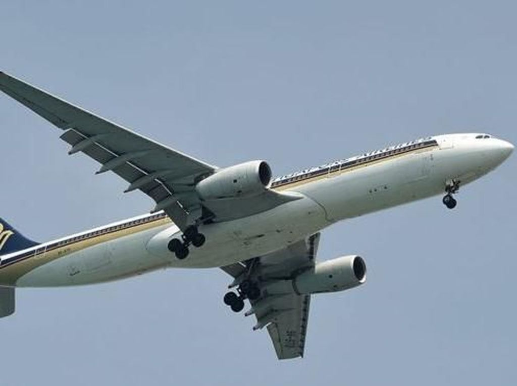 Waduh! Penumpang Temukan Gigi Manusia di Makanan dalam Pesawat