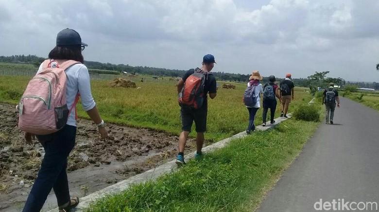 Paket wisata jalan kaki di Banyuwangi (Ardian/detikTravel)