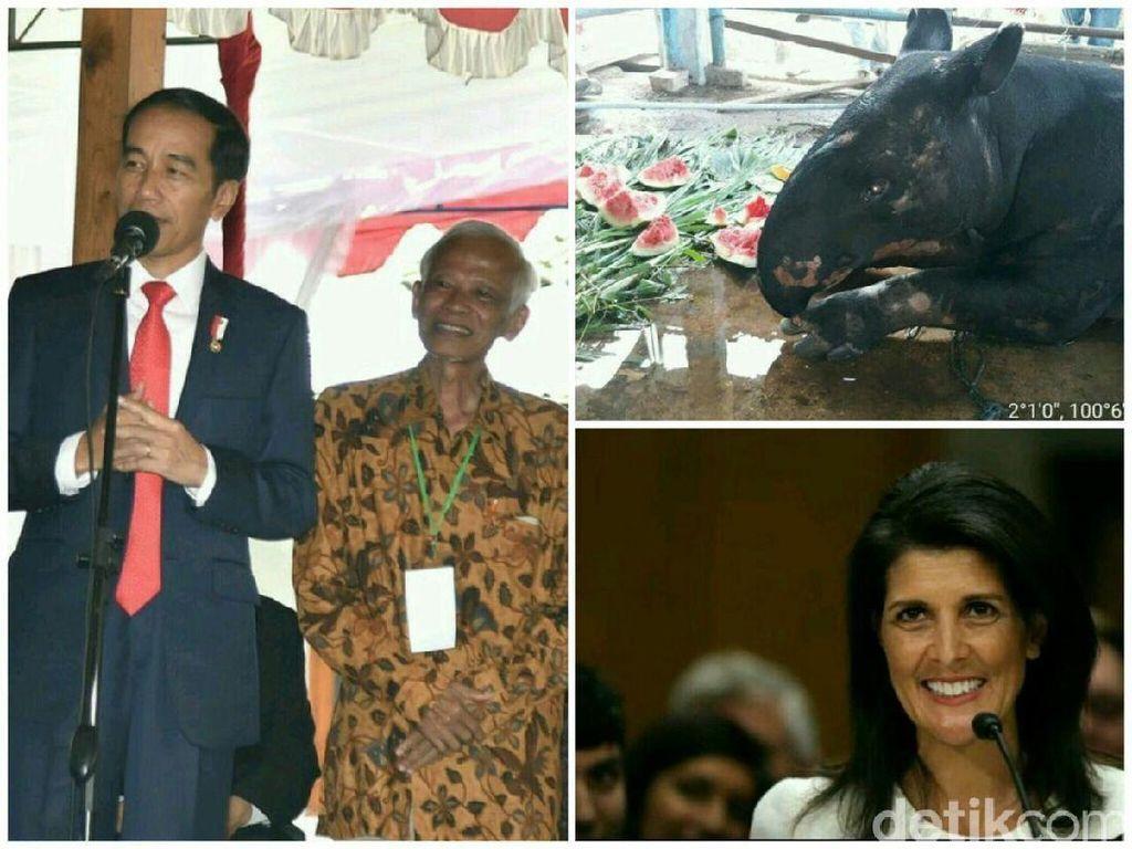 AS Gunakan Veto Soal Palestina, Jokowi Nostalgia di Kampus